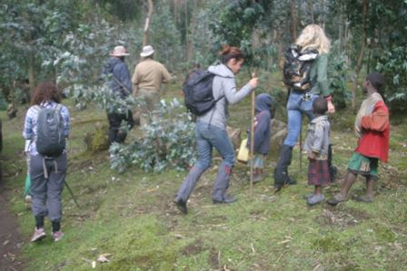 21 Days Experience Rwanda Tour